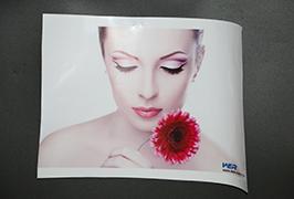 自粘式乙烯基由3.2米(10英尺)eco溶劑打印機WER-ES3202 4打印